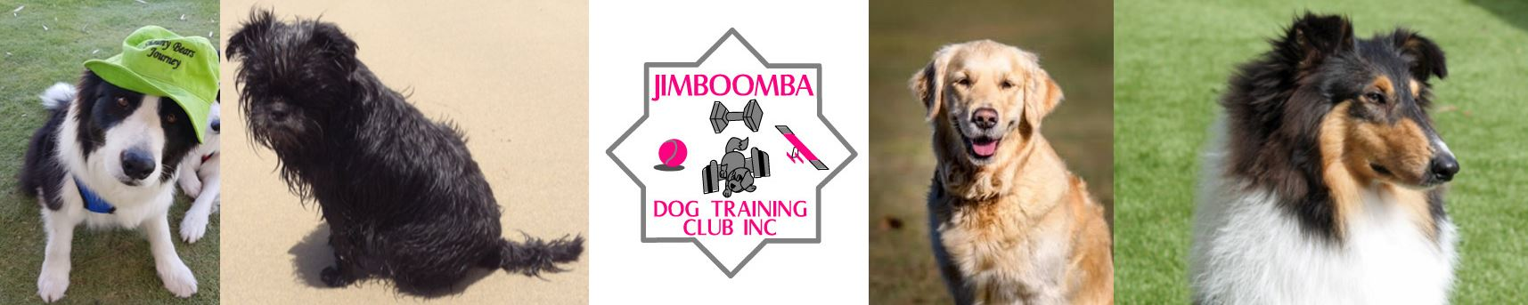 Jimboomba Dog Training Club